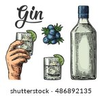 glass and bottle of gin and... | Shutterstock .eps vector #486892135
