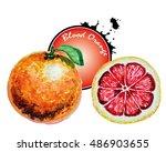 blood red orange   Shutterstock . vector #486903655