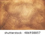Stock photo pattern on tortoise shell background 486938857