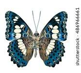beautiful turqouise blue... | Shutterstock . vector #486966661
