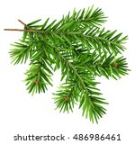 green fluffy fir branch.... | Shutterstock . vector #486986461