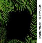 beautifil palm tree leaf ...   Shutterstock . vector #486990835