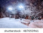 Winter. Winter Night Landscape...