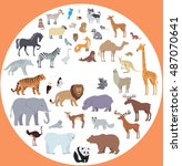 set of animal species . flat... | Shutterstock . vector #487070641