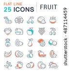 set vector line icons in flat... | Shutterstock .eps vector #487114459