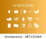 nuts icons | Shutterstock .eps vector #487131964