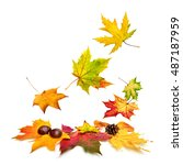 isolated multi colored autumn...   Shutterstock . vector #487187959