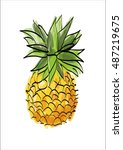 painted pineapple on a white... | Shutterstock .eps vector #487219675