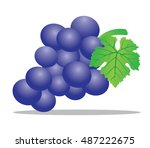a grape is a fruiting berry of...
