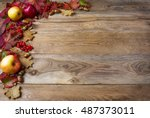 border of apples  acorns ... | Shutterstock . vector #487373011