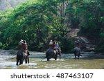 elephant trekking through... | Shutterstock . vector #487463107