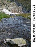 Small photo of River in the Altai mountains