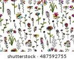 floral seamless pattern  sketch ... | Shutterstock .eps vector #487592755