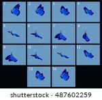 Animation Of Flight Blue...