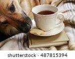dog steals a cookie.  | Shutterstock . vector #487815394