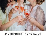 bride and bridesmaids are... | Shutterstock . vector #487841794