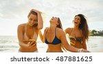 happy group of friends having... | Shutterstock . vector #487881625