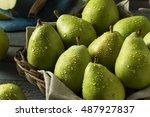 raw green organic danjou pears... | Shutterstock . vector #487927837