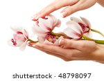 hands and orchid over isolated... | Shutterstock . vector #48798097