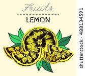 lemon black line hand drawn... | Shutterstock .eps vector #488134591