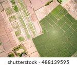 Aerial Shot Of Corn Field