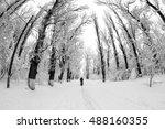 Snowing Landscape In The Park....