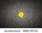 Single Yellow Autumn Leaf Lyin...