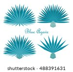 blue agave or tequila agave... | Shutterstock .eps vector #488391631