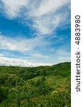 summer landscape with a green... | Shutterstock . vector #4883980