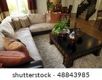 luxury home living room with... | Shutterstock . vector #48843985