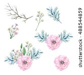 Watercolor illustration set: delicate flowers, eucalyptus, branches, rose