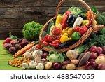 abundance of organic vegetables ...   Shutterstock . vector #488547055