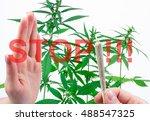 marijuana with joint  spliff  . ... | Shutterstock . vector #488547325