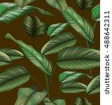illustration of  calathea... | Shutterstock .eps vector #488642311