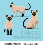cat siamese tonkinese cartoon... | Shutterstock .eps vector #488668681