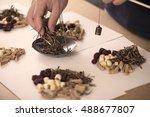 chinese herbal medicine | Shutterstock . vector #488677807