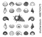 Sea Shell Silhouettes. Marine...
