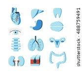 set of human body organs.... | Shutterstock . vector #488759491