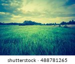 vintage photo of summer meadow... | Shutterstock . vector #488781265