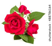 Stock photo red rose flower bouquet isolated on white background cutout 488786164