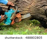 Small photo of Logger use chainsaw