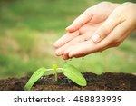 woman hands watering plant in... | Shutterstock . vector #488833939