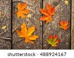 autumn maple leaf on wooden... | Shutterstock . vector #488924167