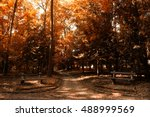 Autumn Fall Colors Path With...