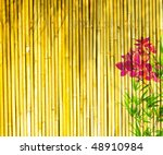 fresh orchids with bamboo...   Shutterstock . vector #48910984