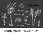 hand drawn sugar cane set....   Shutterstock .eps vector #489314224