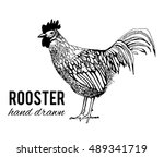 rooster. hand drawn | Shutterstock .eps vector #489341719