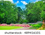 summer park with beautiful... | Shutterstock . vector #489416101