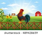 Cartoon Rooster Crowing At Far...