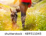 Stock photo young woman with her dog walking 489511045